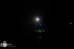 elodia-pict_fdtd-2017-020